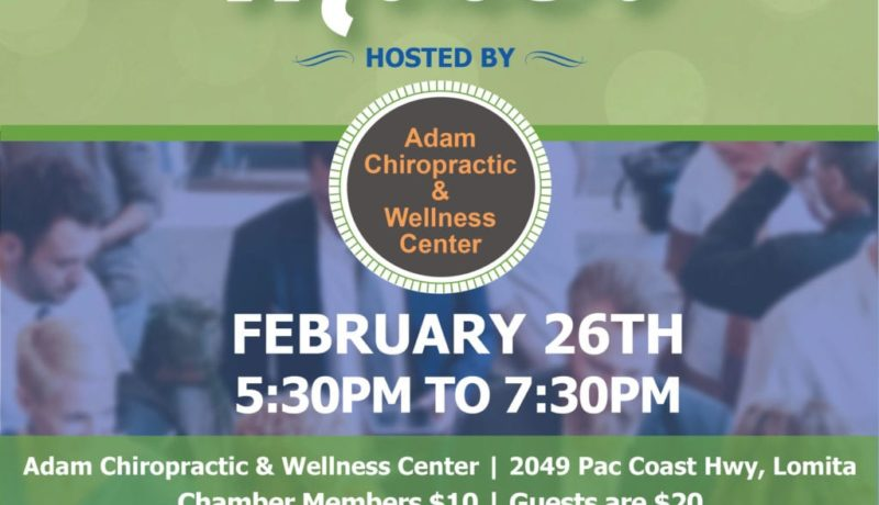 chamber-mixer-IG-february2020