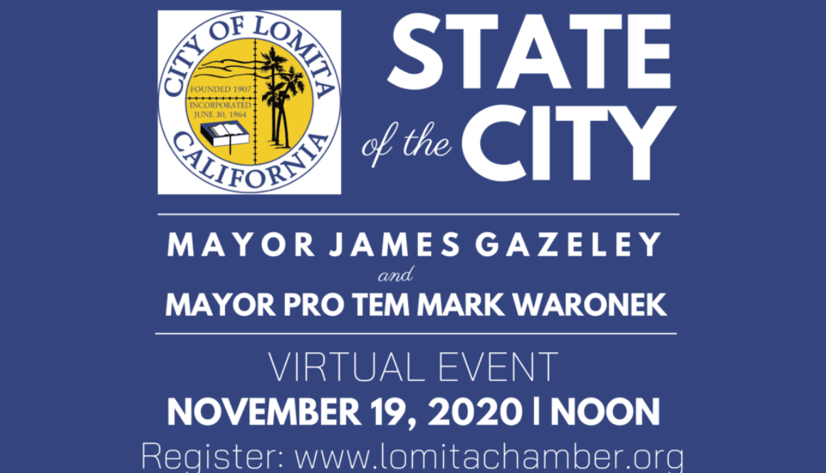 State of the City 2020 IG